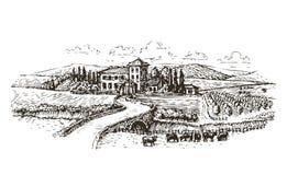Landbouwbedrijf, landbouw of wijngaardenschets Uitstekende landschaps vectorillustratie royalty-vrije illustratie