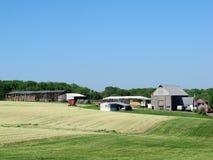 Landbouwbedrijf in Maryland royalty-vrije stock fotografie