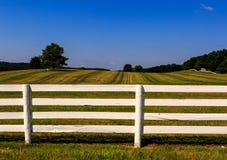 Landbouwbedrijf in Maryland met vers geschilderde witte omheining Stock Afbeeldingen