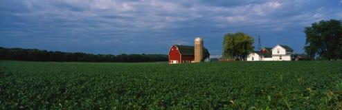 Landbouwbedrijf met een silo en een schuur Stock Foto's