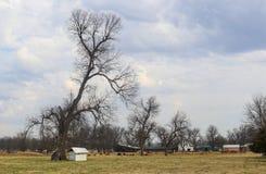 Landbouwbedrijf met schuren en materiaal in de vroege lente met bomen nog naakt van bladeren en koeien in het weiland onder drama stock fotografie