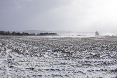 Landbouwbedrijf onder bergen in de winter Royalty-vrije Stock Foto's