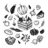 Landbouwbedrijf, oogst, groenten en vruchten Stock Foto's