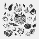 Landbouwbedrijf, oogst, groenten en vruchten Stock Afbeeldingen
