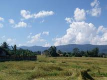 Landbouwbedrijf op WaingKean Royalty-vrije Stock Foto's