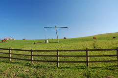 Landbouwbedrijf in Transsylvanië Stock Fotografie