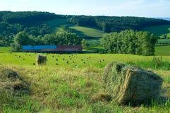 Landbouwbedrijf in Tsjechische republiek 1 stock afbeeldingen
