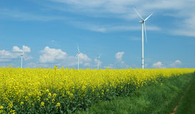 Landbouwbedrijf van windturbines dicht bij verkrachtingsgebied Royalty-vrije Stock Foto's