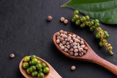 Landbouwbedrijf verse groene peperbollen die op hout worden ge?soleerd royalty-vrije stock foto
