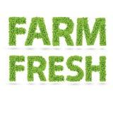 Landbouwbedrijf verse tekst van groene bladeren Royalty-vrije Stock Foto