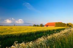Landbouwbedrijf, windmolen en canolagebieden onder blauwe hemel Royalty-vrije Stock Foto's