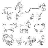 Landbouwbedrijfdieren Royalty-vrije Stock Fotografie