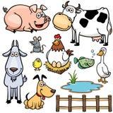 Landbouwbedrijfdieren Royalty-vrije Stock Foto's