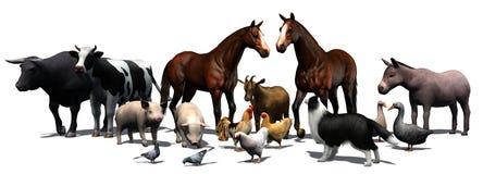Landbouwbedrijfdieren - die op witte achtergrond worden gescheiden Stock Afbeeldingen