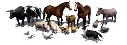 Landbouwbedrijfdieren - die op witte achtergrond worden gescheiden Stock Fotografie