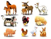 Landbouwbedrijfdieren en hun babys Stock Foto