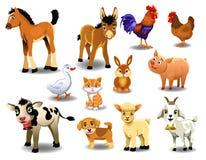 Landbouwbedrijfdieren op een witte achtergrond Royalty-vrije Stock Foto