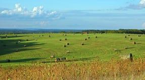 Landbouwbedrijfgebied Royalty-vrije Stock Afbeeldingen