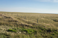 Landbouwbedrijfgebied tijdens Zonsondergang Stock Foto's