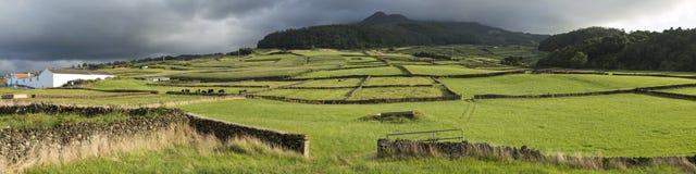 Landbouwbedrijfgebieden in het Terceira-eiland in de Azoren, Portugal Royalty-vrije Stock Afbeelding