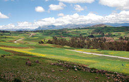 Landbouwbedrijfgebieden, huizen, en weg in de bergen Royalty-vrije Stock Foto