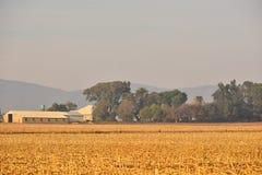 Landbouwbedrijfgebouwen Stock Fotografie