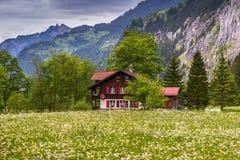 Landbouwbedrijfhuis op Bloemgebied Zwitserland, donkere de lentedag Royalty-vrije Stock Fotografie