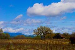 Landbouwbedrijfhuis in Sonoma-Provincie Royalty-vrije Stock Foto