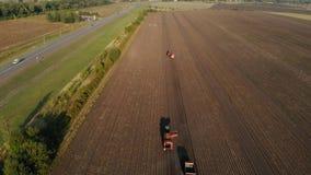 Landbouwbedrijfmachines het oogsten aardappels Landbouwersgebied met een aardappelgewas Het schieten van de lucht stock video