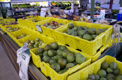 Landbouwbedrijfmarkt royalty-vrije stock foto's