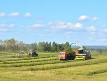 Landbouwbedrijfmateriaal om te oogsten Stock Foto