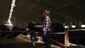 Landbouwbedrijfmeisje in de schuur stock videobeelden