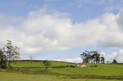 Landbouwbedrijfplattelandshuisje en weiland, dichtbij Deloraine, Tasmanige Stock Afbeelding