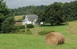 Landbouwbedrijfscène royalty-vrije stock fotografie