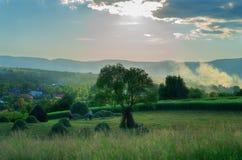 Landbouwbedrijfscène in Breb Maramures Roemenië Royalty-vrije Stock Afbeeldingen