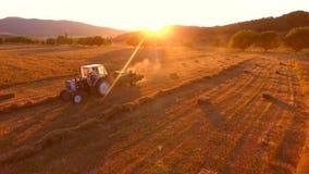 Landbouwbedrijftractor die hooi verzamelen en hooibergen op het gebied maken tijdens verbazende gouden zonsondergang HD slowmotio stock footage