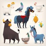 Landbouwbedrijfvogels en dieren royalty-vrije illustratie