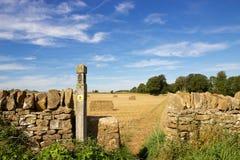 Landbouwbedrijfweg langs Cotswold-Maniervoetpad in zuidelijk Engeland Stock Foto's