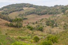 Landbouwbedrijven in de winter, de vallei van Dos Vinhedos van het Dal royalty-vrije stock foto