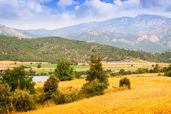 Landbouwbedrijven en gebieden in Lleida royalty-vrije stock foto