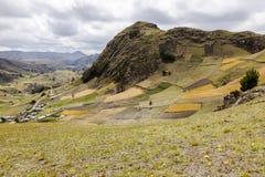 Landbouwbedrijven en gewassen op hellingen dichtbij Zumbahua stock afbeeldingen