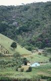 Landbouwbedrijven en ontbossing in zuidelijk Brazilië Royalty-vrije Stock Foto's