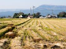 Landbouwbedrijven en padievelden binnen de vulkanische caldera van Aso stock foto's