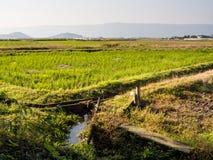 Landbouwbedrijven en padievelden binnen de vulkanische caldera van Aso royalty-vrije stock afbeelding
