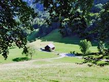 Landbouwbedrijven en weilanden in de vallei van Seez-rivier of Seeztal-vallei royalty-vrije stock foto
