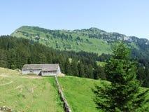 Landbouwbedrijven en weilanden van het Obertoggenburg-gebied royalty-vrije stock afbeelding