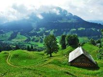 Landbouwbedrijven en weilanden van het Ostschweiz-gebied stock fotografie