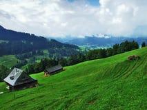 Landbouwbedrijven en weilanden van het Ostschweiz-gebied royalty-vrije stock afbeelding