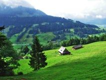 Landbouwbedrijven en weilanden van het Ostschweiz-gebied royalty-vrije stock foto's