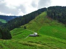 Landbouwbedrijven en weilanden van het Ostschweiz-gebied stock afbeelding